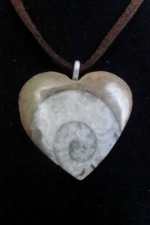 Ammonite Heart Pendant1